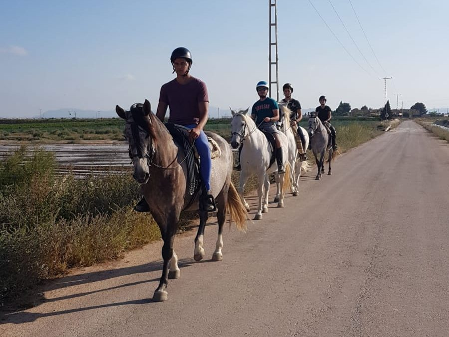FP Deporte: ruta en caballo